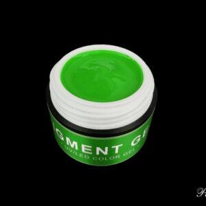 UV/LED pigmentālā gēla krāsa 72